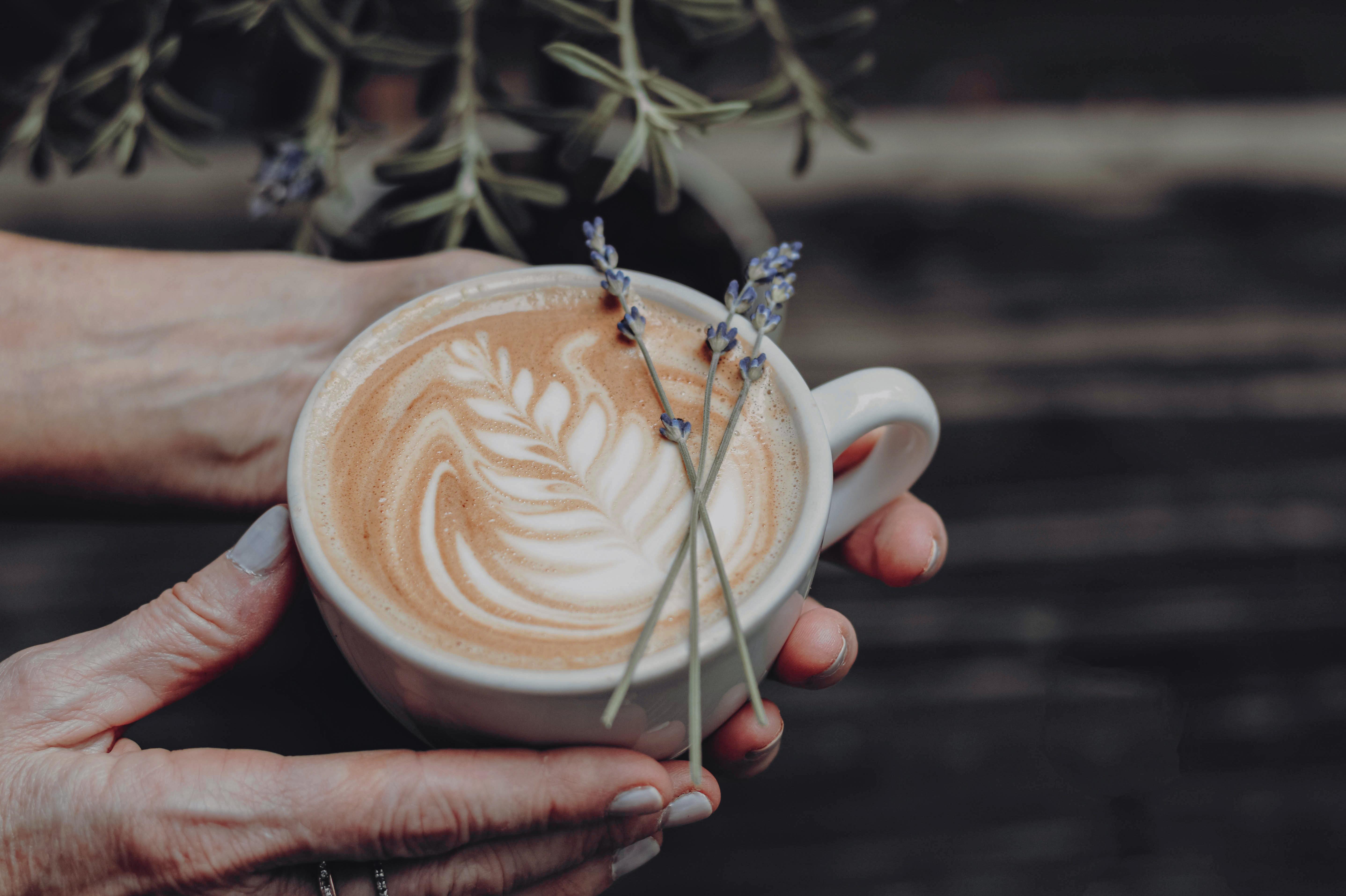 chai latte lavender thermea