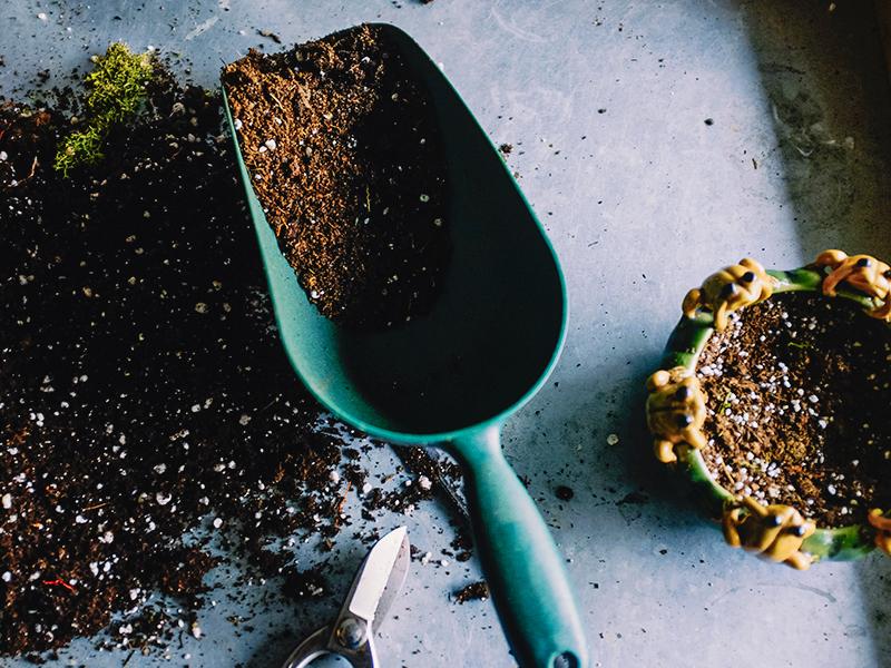 gardening blog thermea